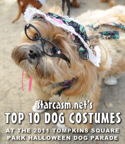 Top 10 costumes at the 2011 Tompkins Square Park Halloween Dog Parade