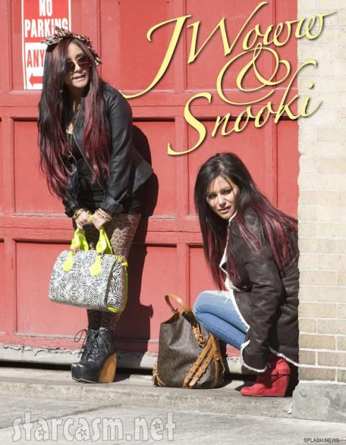 Snooki and JWoww reality show