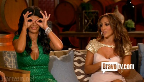 Teresa Giudice and Melissa Gorga from Real Housewives of New Jersey Season 4 Reunion Special