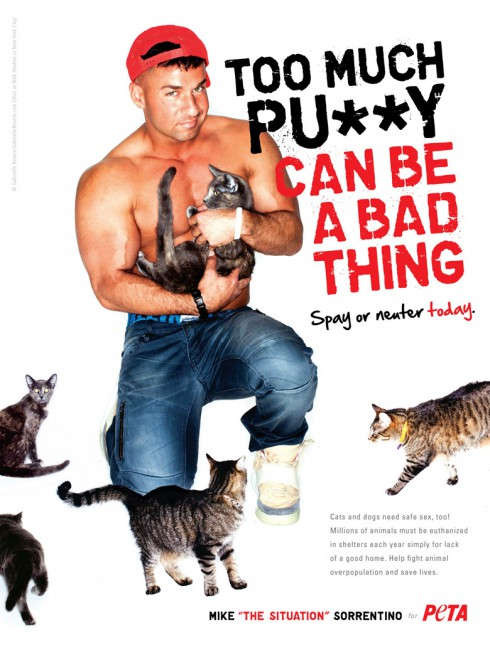 The Situation PETA ad Too much pussy can be a bad thing