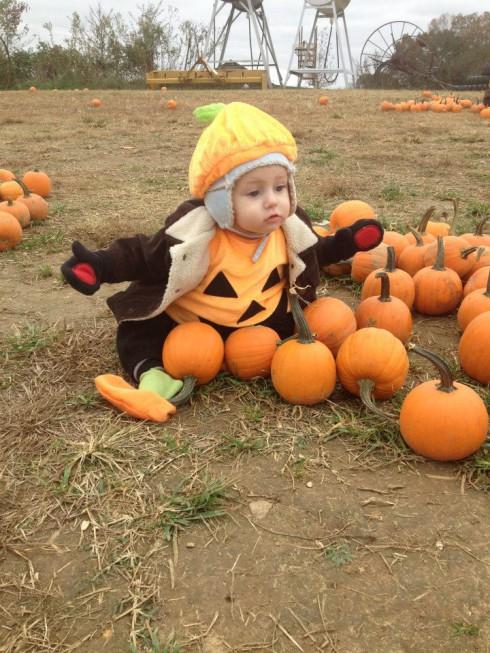 Here Comes Honey Boo Boo Halloween costume contest Pumpkin's pick