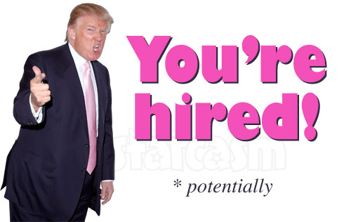 Donald Trump You're Hired