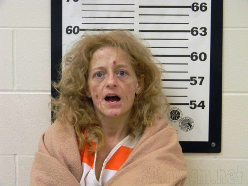 Melissa Wolf's mug shot after being arrested for meth