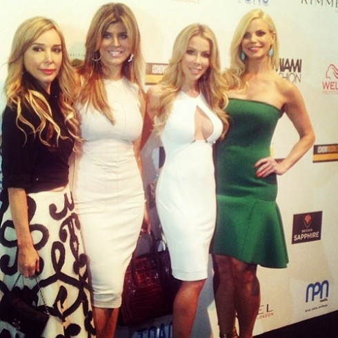 The Real Housewives of Miami season 3 cast including Marysol Patton, Ana Quincoces, Lisa Hochstein, and Alexia Echevarria.