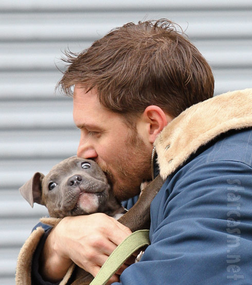 Animal Rescue Tom Hardy