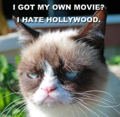 Grumpy cat inks movie deal probably doesnt care grumpy cat to star in garfield like film doesnt care thecheapjerseys