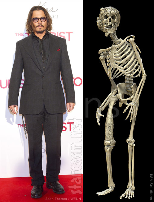 Johnny Depp has a life-size Elephant Man skeleton replica in his office