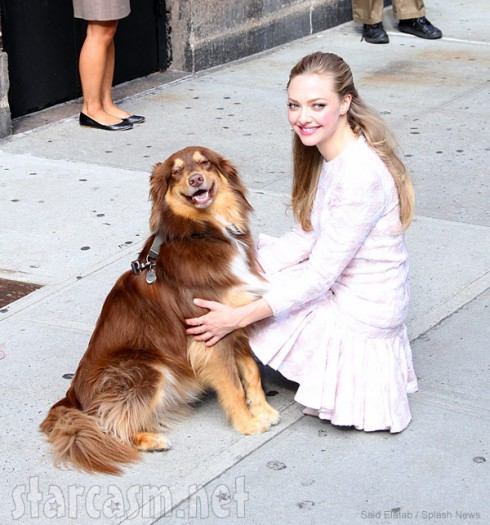 Amanda Seyfried's dog Finn Seyfried outside the David Letterman show
