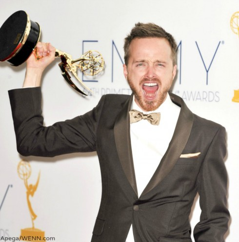 Aaron Paul Emmy Award for Breaking Bad