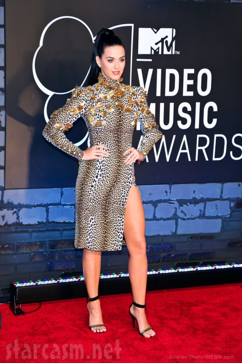Katy Perry 2013 VMAs leopard print dress