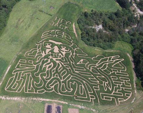 Uncle-Si-Corn-Maze
