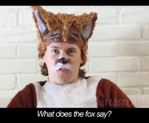 Ylvis What Does the Fox Say music video screenshot