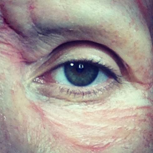 Heidi Klum Makeup Halloween 2013 - Face