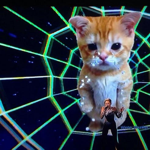 Miley Cyrus Cat Outfit AMAs