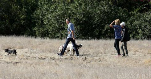Amanda Bynes Walking the Dog