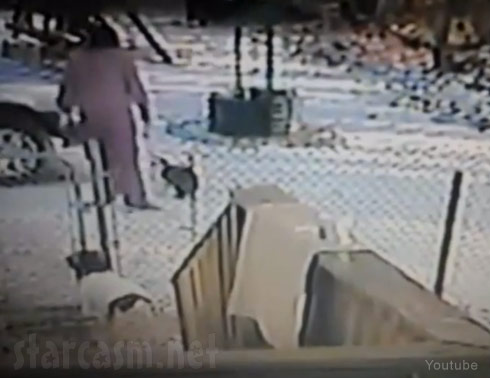 Michigan woman kicks snow at a cat, the cat attacks her head in viral video