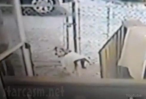 Michigan snow cat attack dog reaction