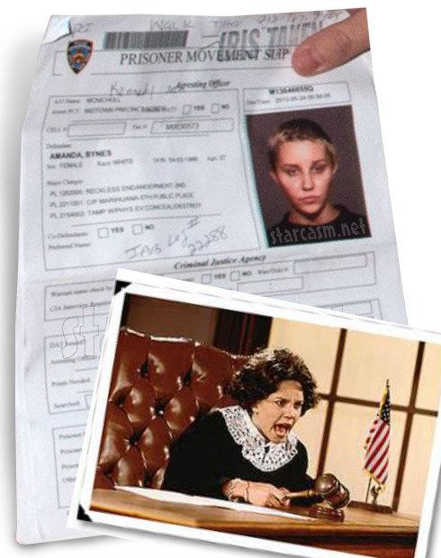Amanda Bynes Bong Case