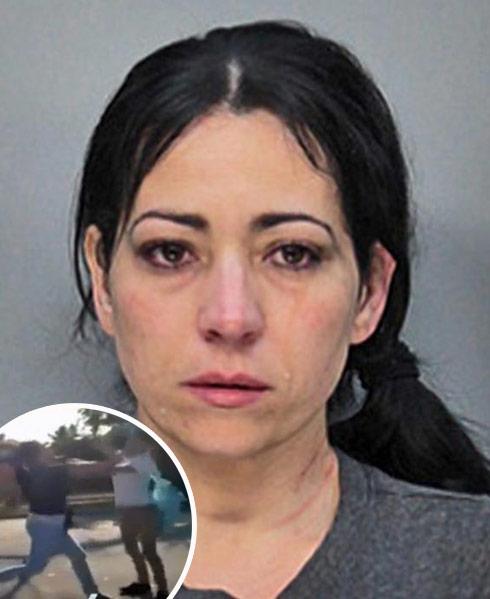Irisdaly Rios mugshot fight