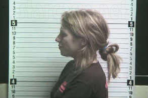 Kristen Lewis mugshot profile