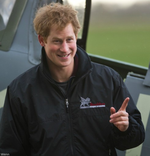 Prince Harry - I Want to Marry Harry
