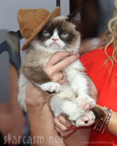 Grumpy Cat Pharrell's hat 2014 MTV Movie Awards