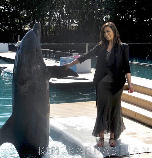 Kim Kardashian shakes a dolphin's flipper in Miami