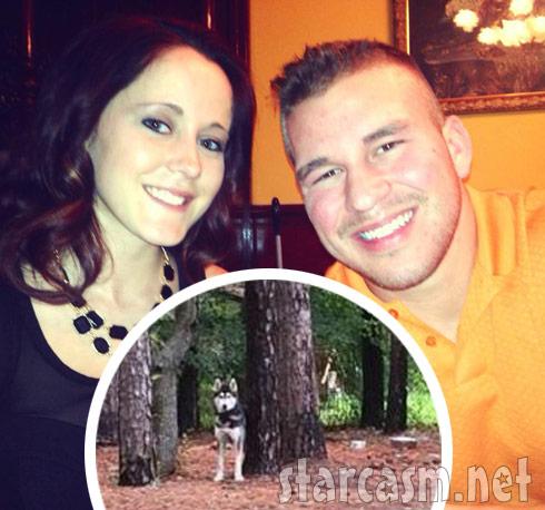 Jenelle Evans' husky dog stolen