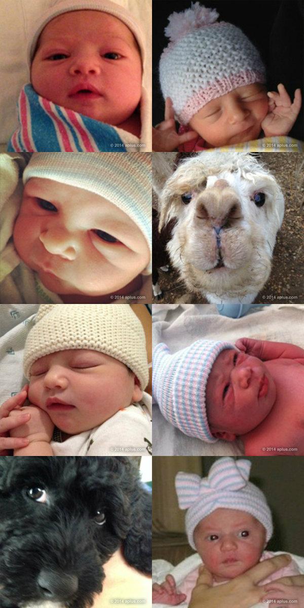 Ashton Kutcher And Mila Kunis Baby Wyatt
