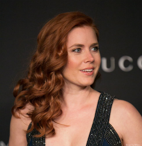 Amy Adams Today Show Appearance Canceled