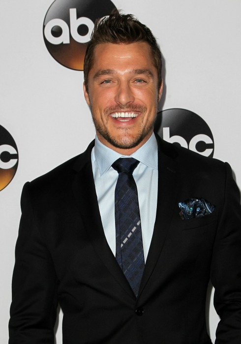 Bachelor spoilers 2015: Chris Soules engaged?