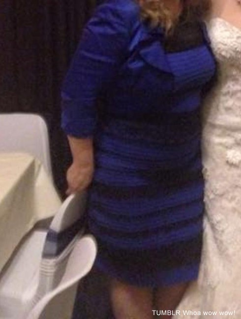 Another photo of the dress proves it is blue and black