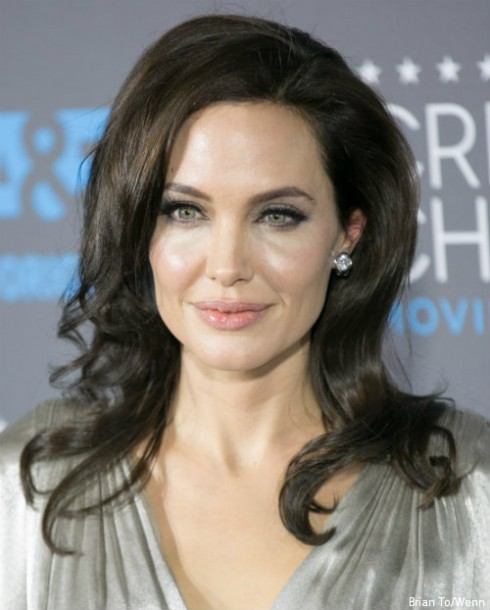 Angelina Jolie Ovaries and Fallopian Tubes Removal