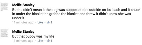 Mellie Stanley Skott dog comment 3