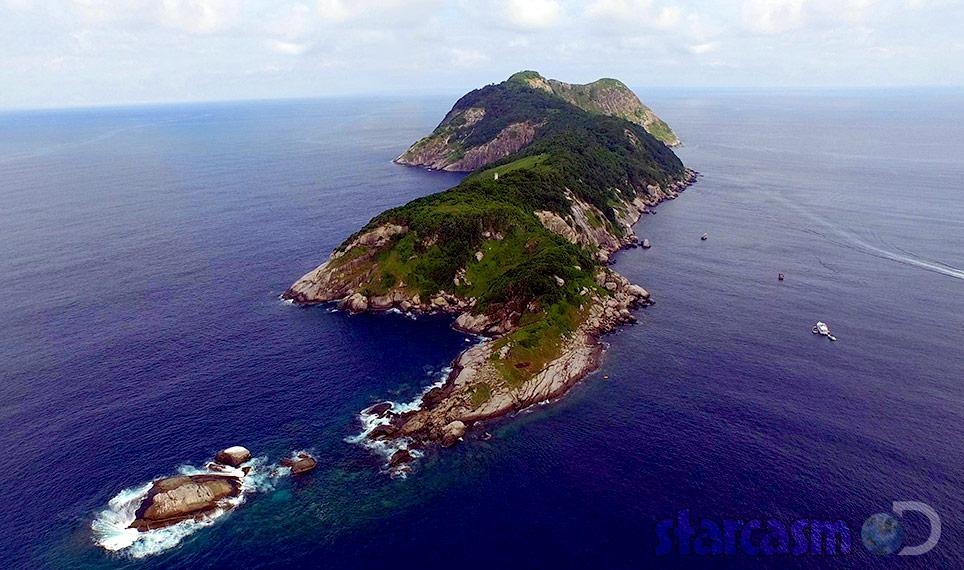 Treasure Quest Snake Island Queimada Grande