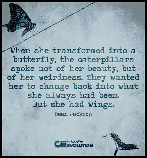 Dean Jackson butterfly and caterpillars quote graphic