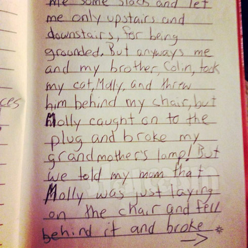 Jenelle Evans childhood diary entry