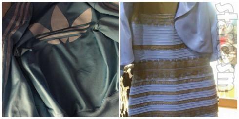 The Jacket vs The Dress