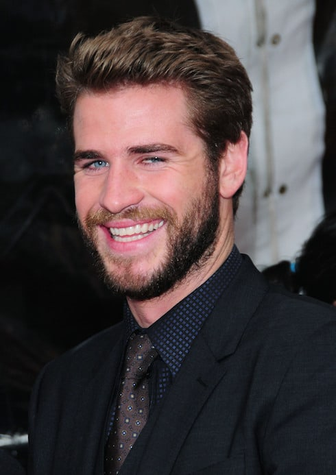 'The Hunger Games: Mockingjay - Part 2' special screening at AMC Lincoln Square - Arrivals Featuring: Liam Hemsworth Where: New York, United States When: 18 Nov 2015 Credit: Dan Jackman/WENN.com