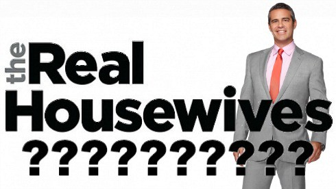 Andy Cohen The Real Housewives