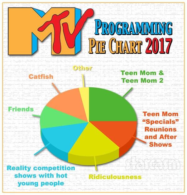 MTV Programming Pie Chart 2017