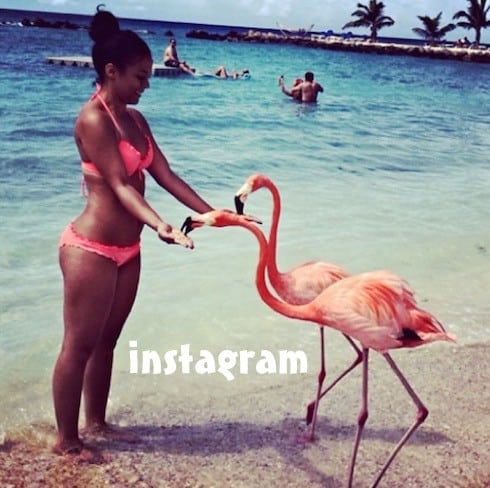 Basketball Wives Melissa Metoyer bikini photos 2