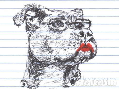 Sarah Palin pit bull with lipstick