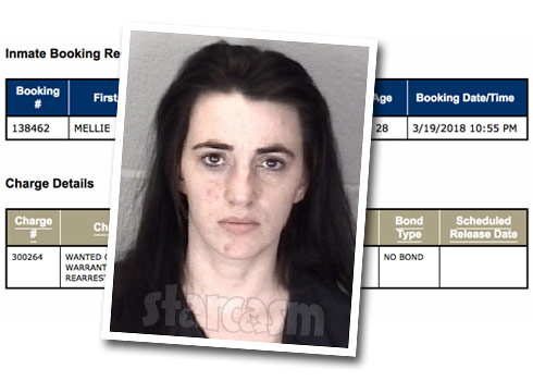 Mellie Stanley arrest Indiana 2018