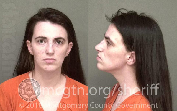 Mellie Stanley arrest mug shot Tennessee 2018