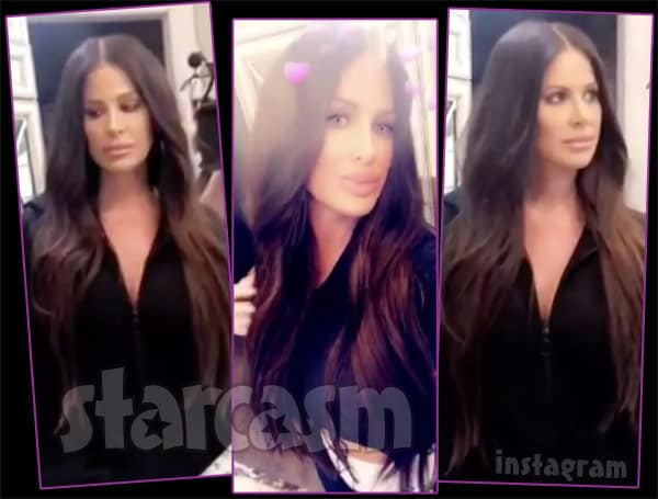 Kim Zolciak-Biermann brunette hair photos