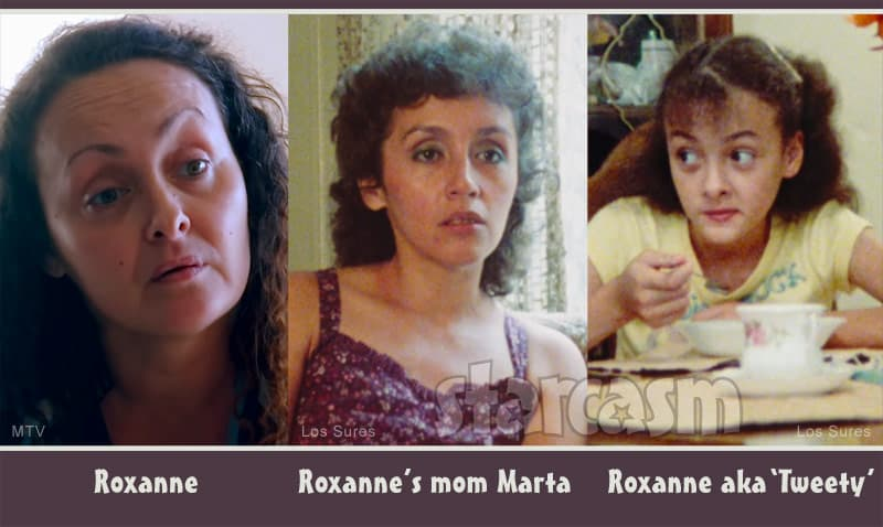 Teen Mom 2 Briana DeJesus' mom Roxanne and grandma Marta featured in 1984 NYC documentary Los Sures