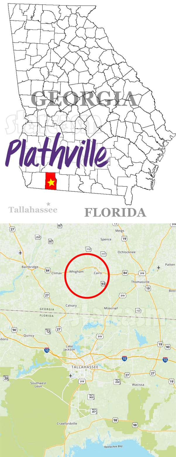 Welcome To Plathville Georgia map