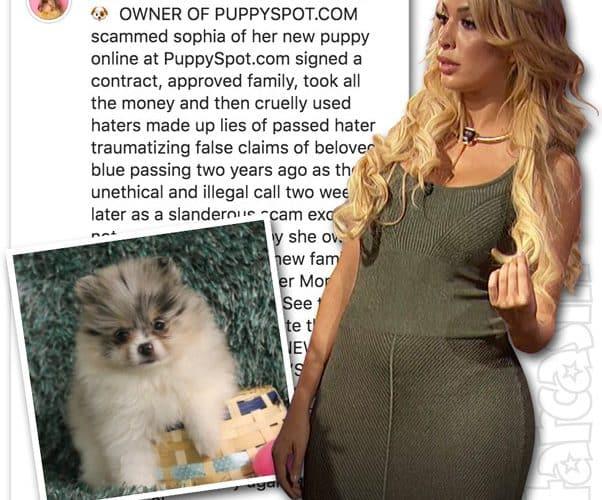 Teen Mom Farrah Abraham PuppySpot Manny the Pomeranian