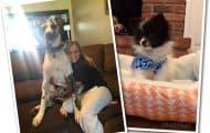 Mackenzie McKee dogs Annie and Hank